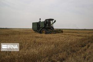 مصرف ۱۰ درصد از گازوییل کشور در بخش کشاورزی